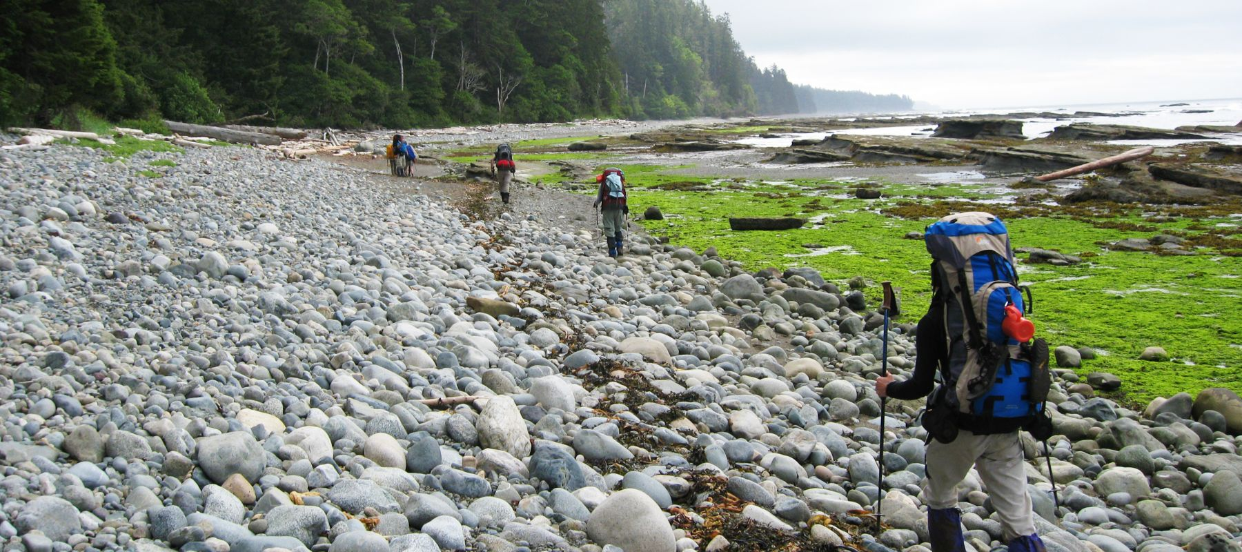 British Columbia Trekking Adventure: Hike The West Coast Trail